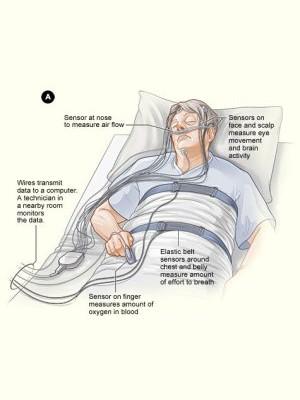 睡眠衛生教育